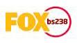 bs_fox.jpg